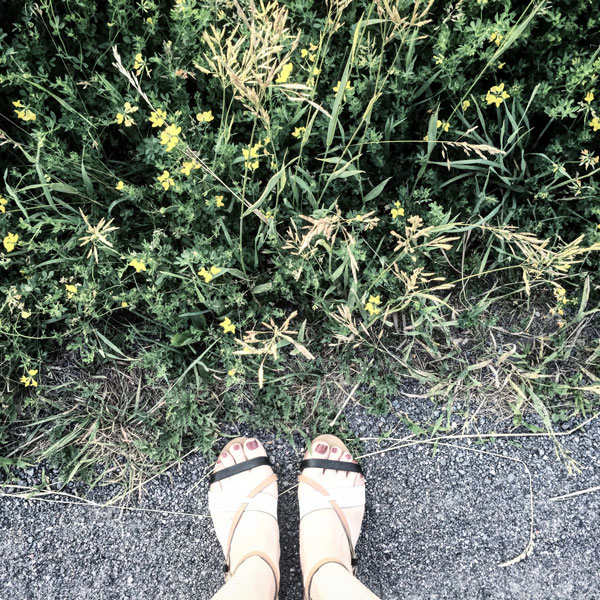 #FromWhereIStand_Montreal_nancy